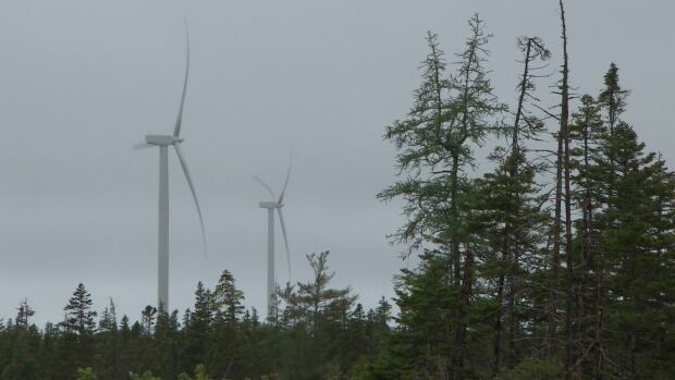 "The hearings before the Utility and Review Board will consider the tariffs charged by Nova Scotia Power to the independent producers of wind, solar and other renewable energies as part the province's ""renewable to retail"" program."