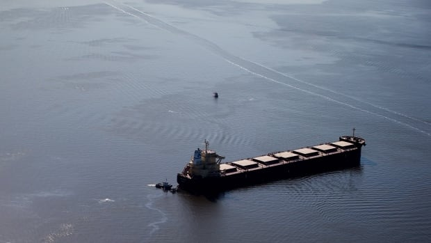 Bunker fuel spilled into the waters of English Bay on April 8, 2015