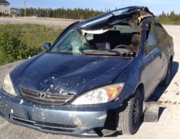 Car after moose collision Stephen Bromley