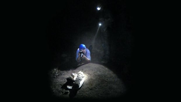 Paul Nicholson, professor of archaeology at Cardiff University, photographing dog mummies in the burial ground catacombs called Saqqara.