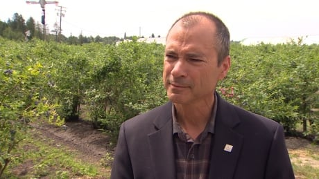 Granting foreign farm workers housing in Kelowna not his decision, says B.C. agriculture minister
