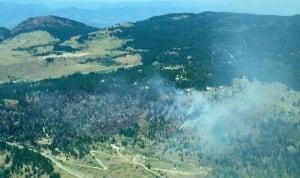 Huckleberry Wildfire