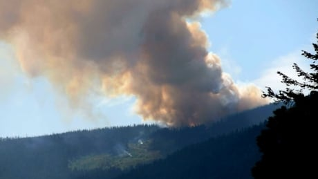 Nelson wildfire