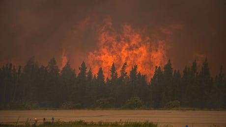 Saskatchewan wildfires' area larger than Toronto