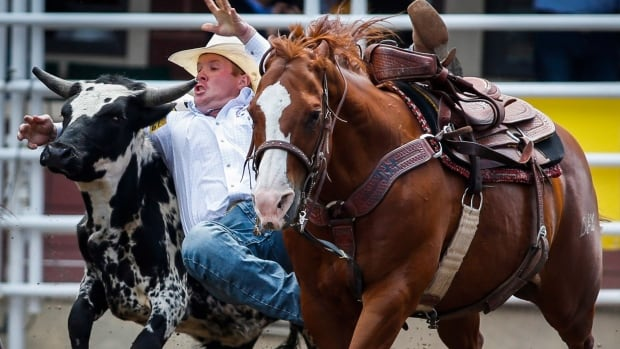 2016 Calgary Stampede Cbc Sports