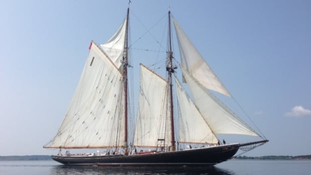 A report released Thursday by the province of Nova Scotia says the weight and angle of the steel rudder on the Bluenose II places extra strain on the schooner, which could eventually reduce the life of the vessel.