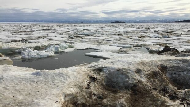 A Coast Guard icebreaker approaches Iqaluit through sea ice in Frobisher Bay last weekend — unusually late in the year for the first ships to arrive. The World Meteorological Organization is calling for better Arctic ice forecasts.