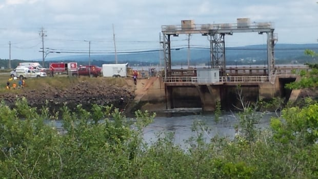 A 39-year-old man from the Dartmouth area died on Wednesday at Nova Scotia Power's Annapolis Tidal Power Plant.