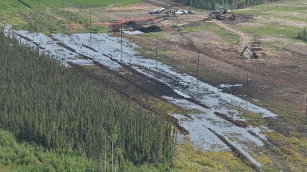 The pipeline that spilled five million litres of emulsion in northern Alberta began operating last year, according to Nexen Energy. But a newer pipeline isn't necessarily a safer one, a veteran investigator says.