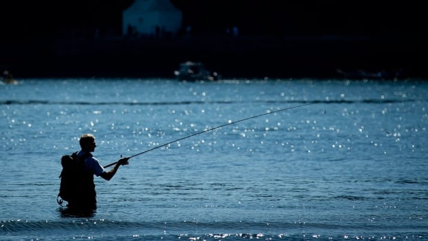 Changes to the Fisheries Act implemented by the Harper government means means economically viable fisheries are the focus of protection, not all fish habitats.