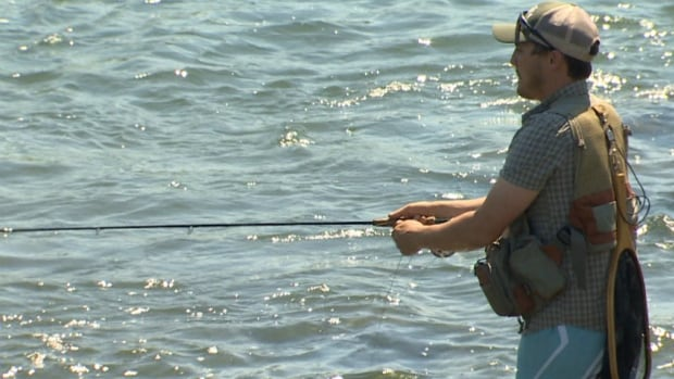 The province is asking fishermen to be aware that the hot, dry weather in southern Alberta is stressing out fish in local rivers and lakes.