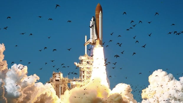 space shuttle columbia and challenger - photo #15