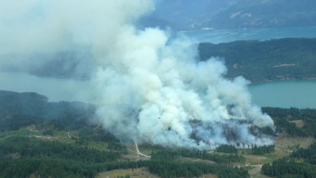 The B.C. Wildfire Service says it believes a wildfire near Harrison Lake was human-caused.