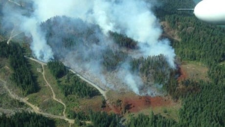 Harrison Lake wildfire a growing concern for crews