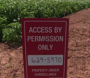 signs on P.E.I. potato fields