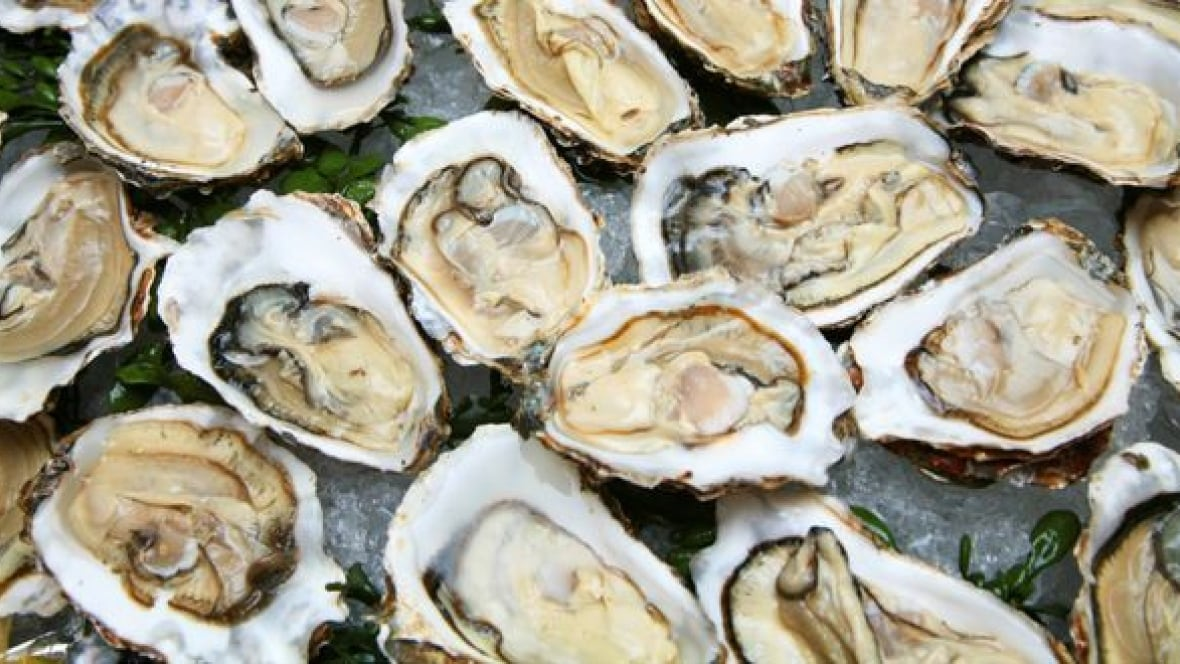... case this year of illness linked to eating raw oysters   News Tangle