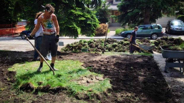 goodbye grass lawn free living in alberta calgary cbc news. Black Bedroom Furniture Sets. Home Design Ideas