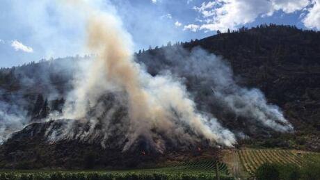 B.C. wildfire starts cool in 'strange' season, but remain vigilant, say officials