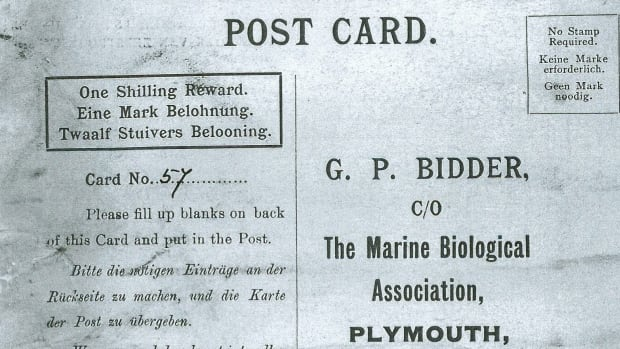 This is an image of a message that was found in a bottle from the The Marine Biological Association of the U.K. The  century-old message in a bottle, possibly the oldest ever found, has finally reached its destination.