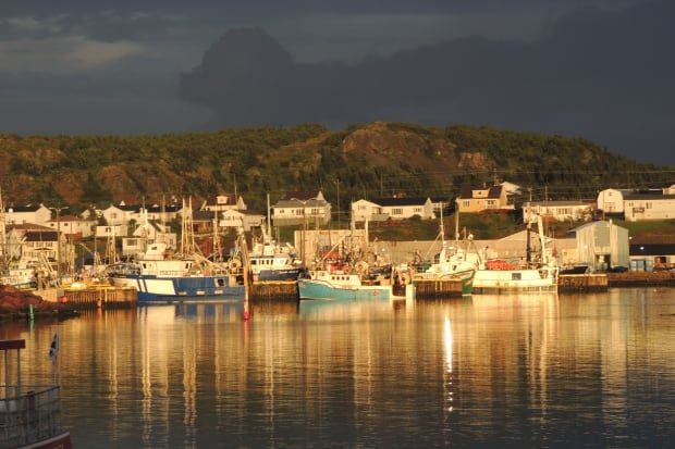 Twillingate harbour by Kathy Watson