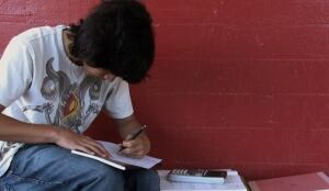 Datos a incluir en curriculum vitae