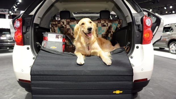 A Chevrolet Equinox is shown on Pet Day at the New York International Auto Show. Canadians bought 12 per cent more Chevrolets in August, GM says.