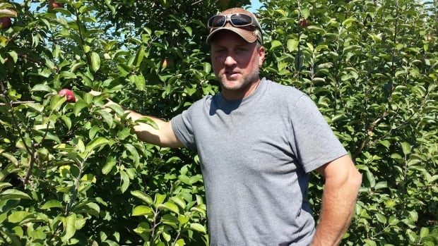 """Dean Beckstead says it's """"been a bad year all around"""" for his crops, especially since a May frost killed a significant amount of his fruit."""