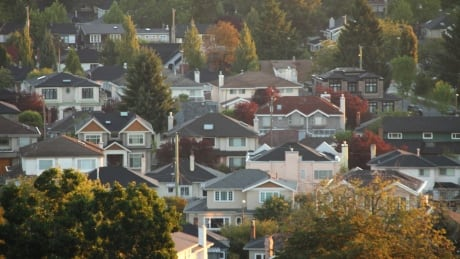 Real estate 'shadow flipping' doesn't reflect bigger picture, analyst says