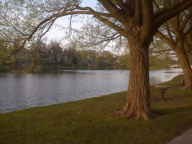 Lake Victoria, part of the Avon River in Stratford Ontario