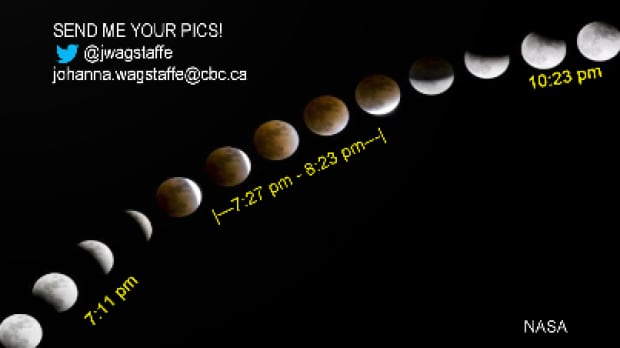 blood moon viewing vancouver - photo #35