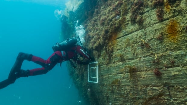 Marc-André Bernier, Parks Canada's manager of underwater archelogy, sets a marine biology sampling quadrat on the port side hull of HMS Erebus in 2014.