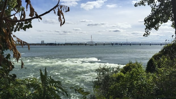 The City of Montreal's wants to dump eight billion litres of raw sewage into the St. Lawrence River over a week-long period starting Sunday.