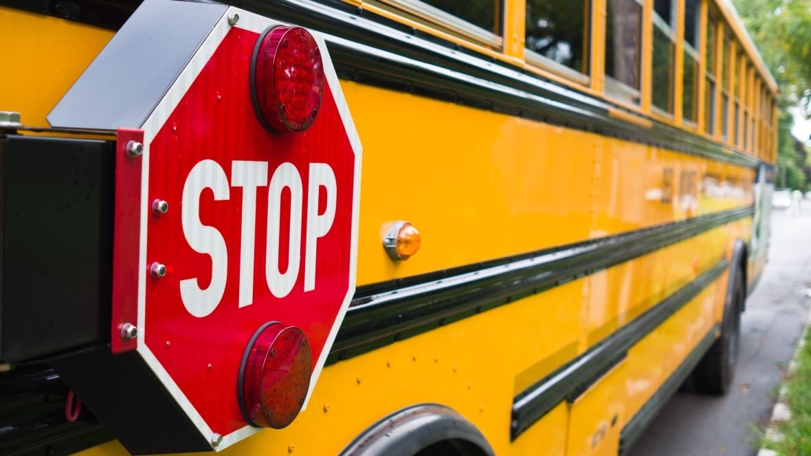 School Bus by Donald Crews  amazoncom