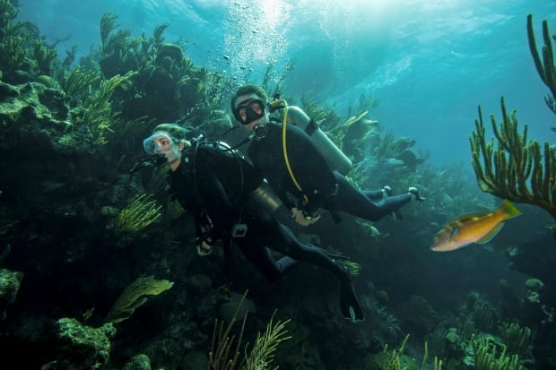 Bermuda Marine Reserve