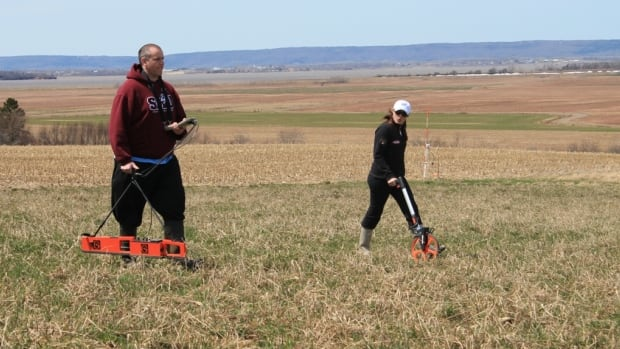 Saint Mary's University students undertake a geophysical survey at Grand Pré National Historic Site in May 2015.