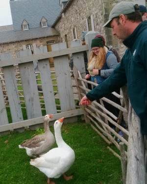 NSCAD students feed the geese at Fortress Louisbourg