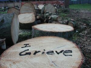 I Grieve 3