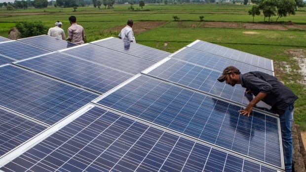 An employee inspects solar panels, part of a solar power microgrid, in the village of Dharnai in Jehanabad, Bihar, India. Mark Campanale says investments in solar and other renewable energy will prove more sustainable than fossil fuels — in more ways than one.