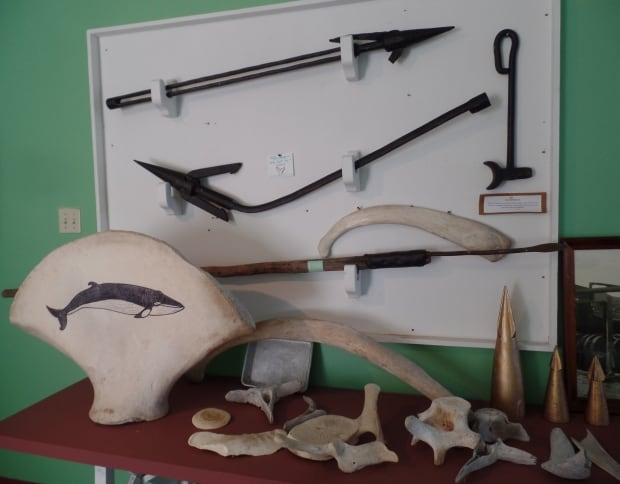 Whale bones and tools at South Dildo Whaling Museum