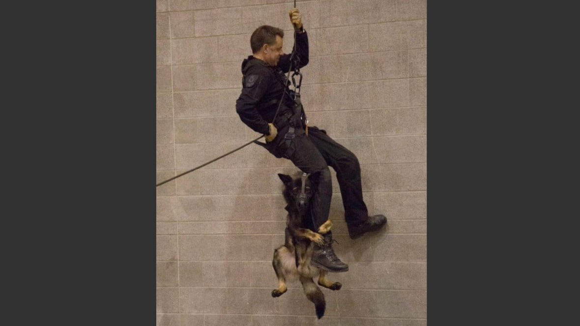 Police Dog Training Edmonton