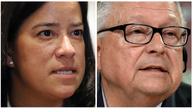 Justice Minister Jody Wilson-Raybould and Public Safety Minister Ralph Goodale will carry out a sweeping review of criminal justice reforms brought in by the Conservatives in the last decade.