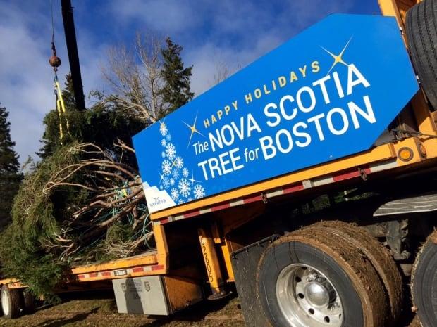 Nova Scotia premier attends send off for Christmas tree headed to Boston