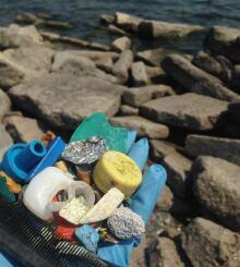 Shoreline waste