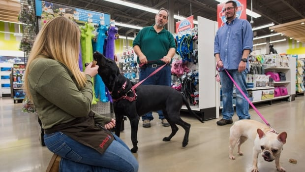 Customers and an employee of Petco are shown. The U.S. chain is is being bought  by a group of investors that includes Canada's national pension plan, the CPPIB.