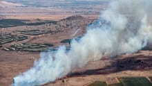 Downing of Russian jet part of Turkey's 'strange game' in Syria