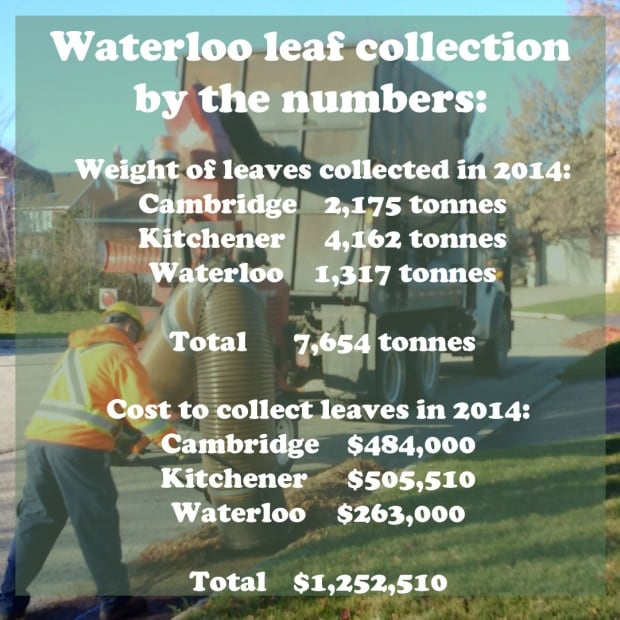 leaf collection cost waterloo kitchener cambridge 1 2m