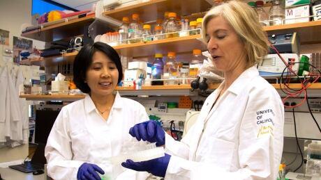HealthBeat Gene Editing