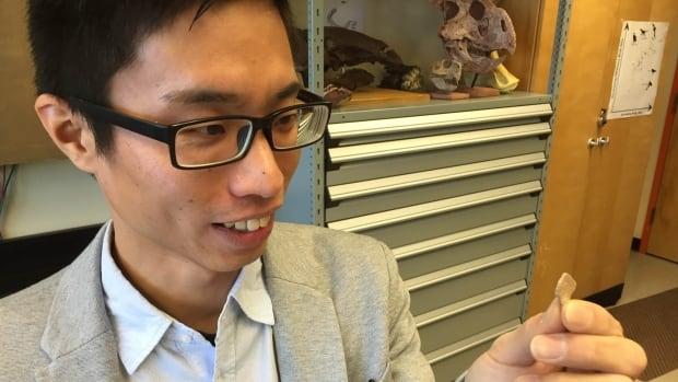 PhD Student Kohei Tanaka holds a tiny piece of dinosaur shell.