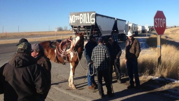 Alberta farmers gather along Highway 2 near Nanton on Monday, Nov. 30, 2015 to protest Bill 6.