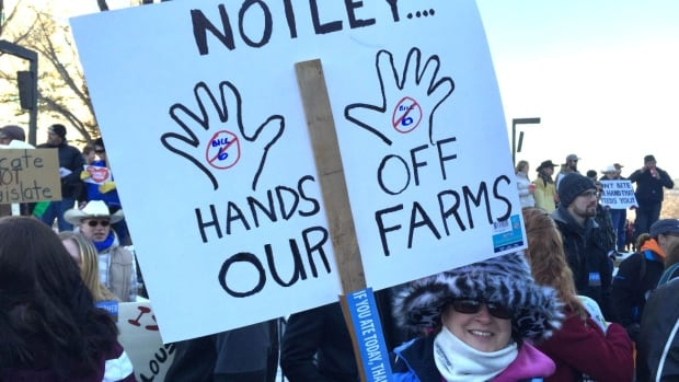 A protester holds a sign at a rally protesting Bill 6, the Enhanced Protection for Farm and Ranch Workers Act.